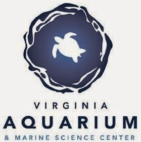 virginia-aquarium-marine-science-center-64